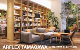 tamagawa_topics00