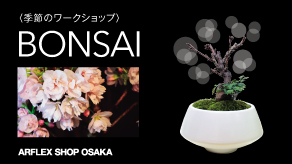 ASO_BONSAI_TOPICS_292_164