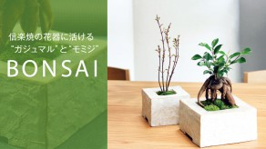 BONSAI_th_1419_797